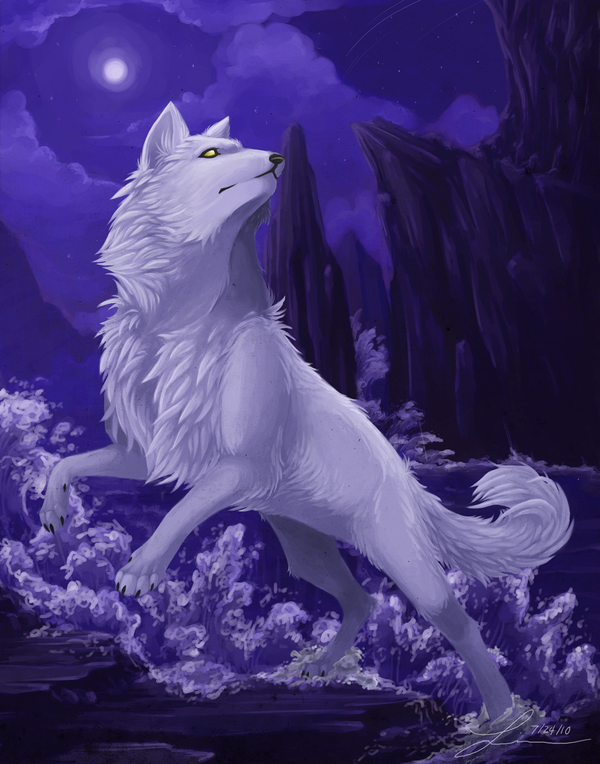 White Wolf With Purple Eyes Wolves/Dogs - A...